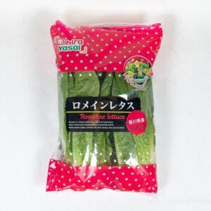 コストコのサラダや炒め物にも使える美味しい国産野菜!「ロメインレタス」がおすすめ