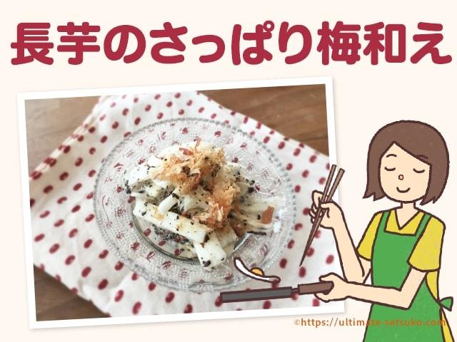 夏にぴったり!カリカリ梅赤しそを使ってできるカンタン長芋さっぱり和え
